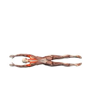 advasana-musculacion