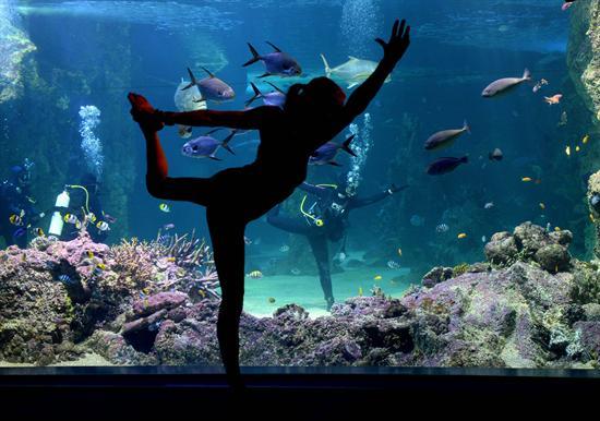 yoga-bago-agua