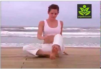 Videos de Yoga - Clases de Yoga Online 403ca58b6a47