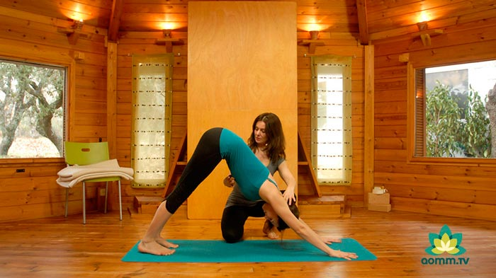 yoga para principiantes aomm