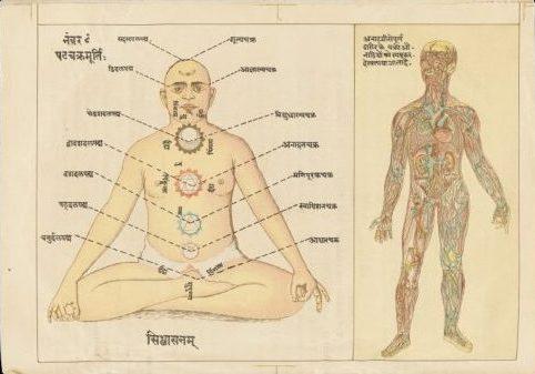 Anatomía espiritual según la Ayurveda